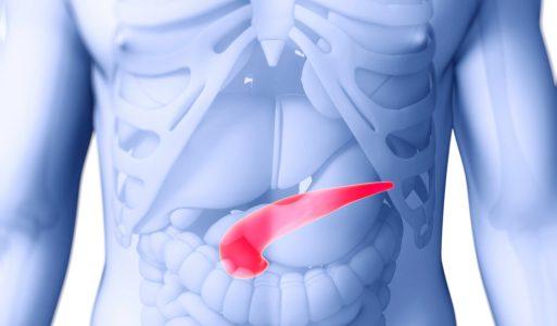 Основные функции поджелудочной железы
